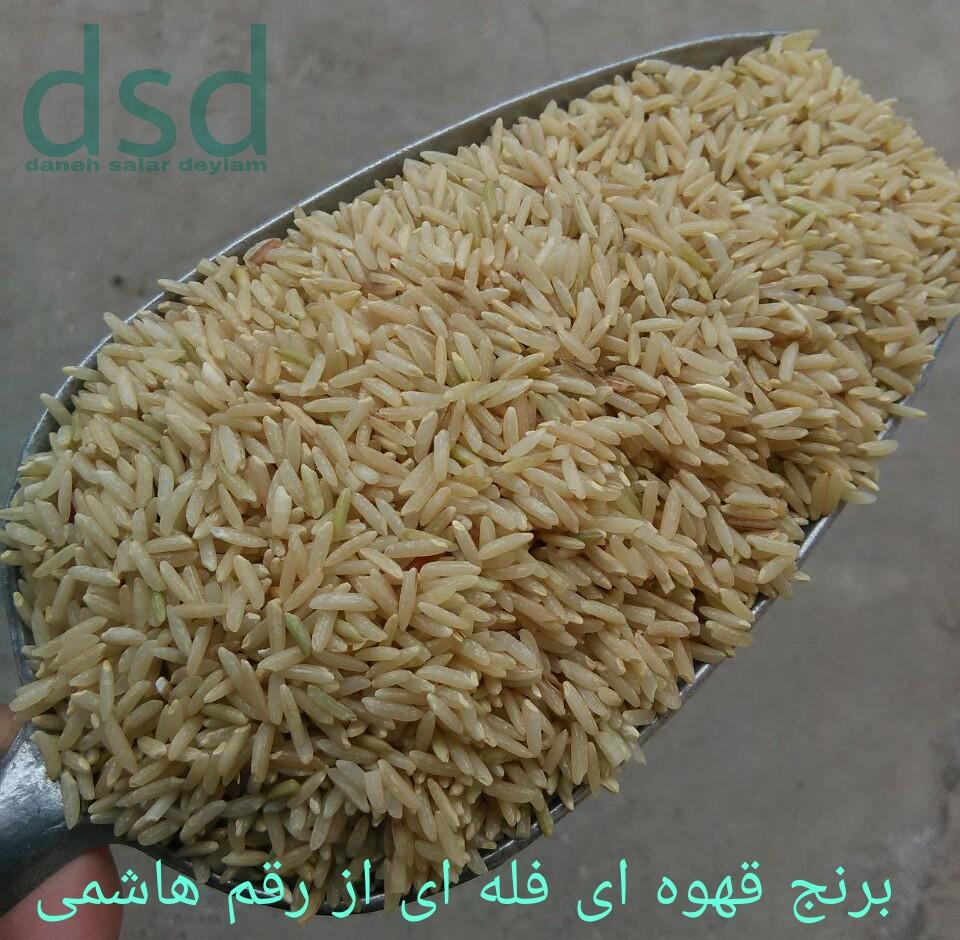 قیمت خید برنج قهوه ای